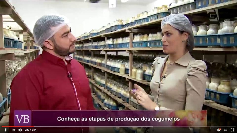 programa_voce_bonita_tv_gazeta_nayumi_cogumelos